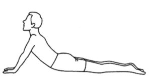 神戸市須磨区はくの接骨院 腰痛体操