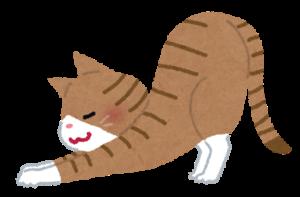 須磨区鷹取はくの接骨院 猫背