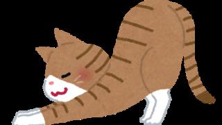 神戸市須磨区はくの接骨院 猫背